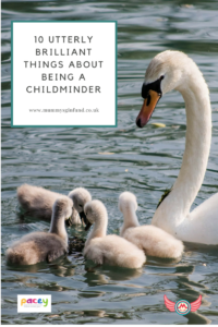 pin - 10 Utterly Brilliant Things About Being A Childminder
