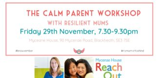 FB event header - calm parent