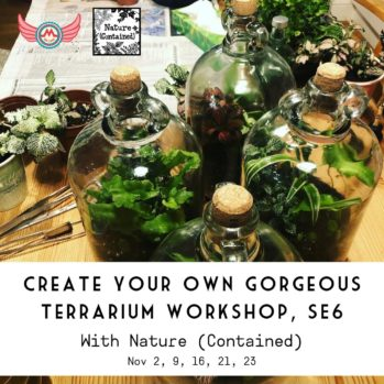 square Create your own gorgeous terrarium workshop