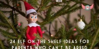 24 elf on the shelf